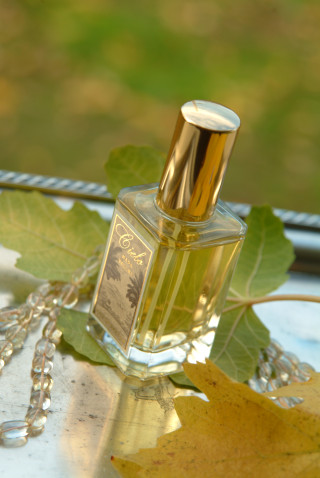 Beth Gehring Perfume Review Quot Halston Classic Fragrance